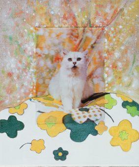 Nina venus art 3d scary cat